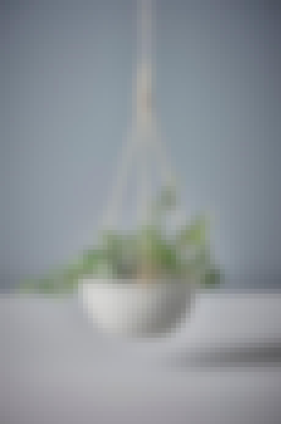 ampel krukke hængeplante altan