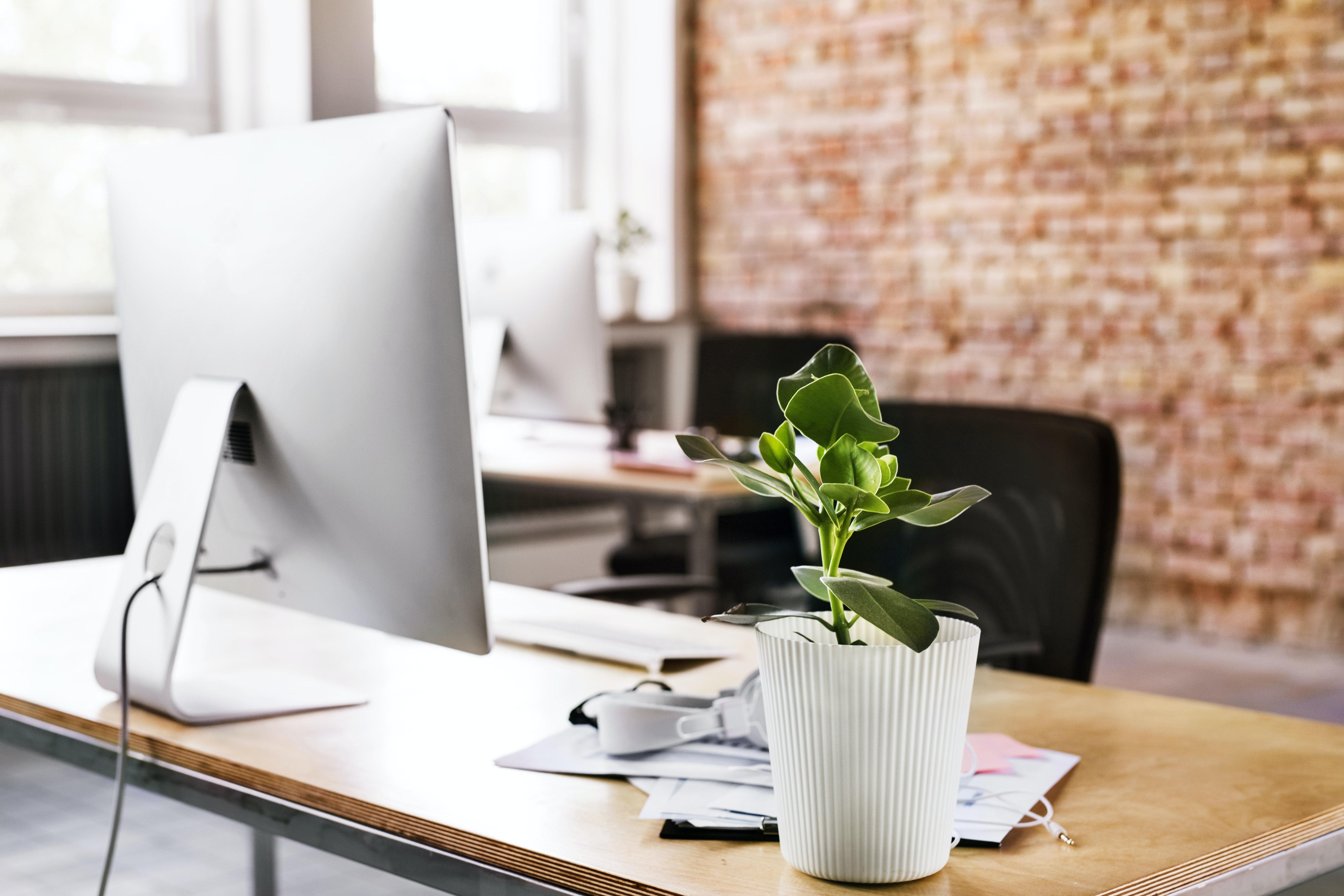 Skrivebord arbejdsbord computer Mac kontor