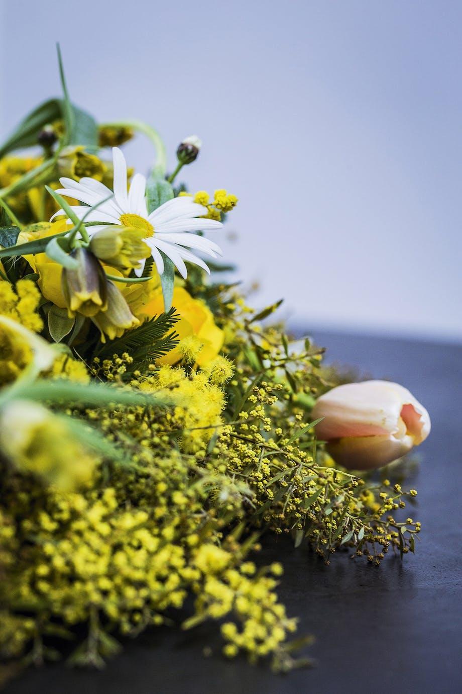blomster eller blomsterkrans med tulipan