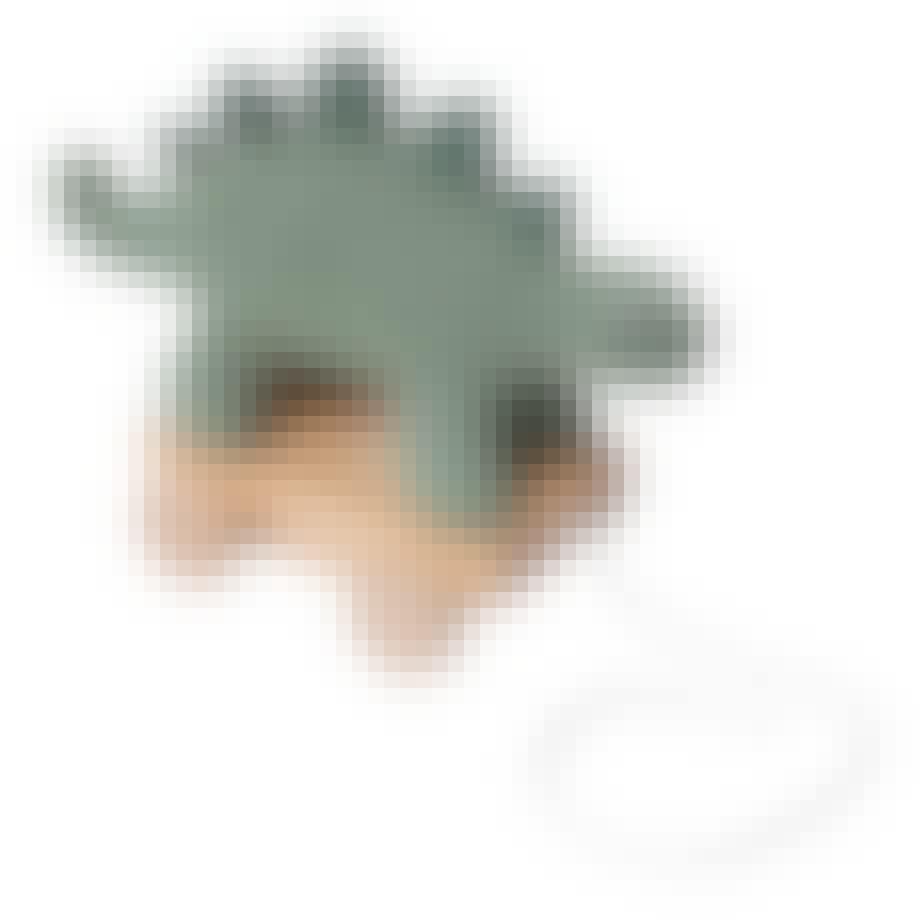 sebra dino trækdyr grøn