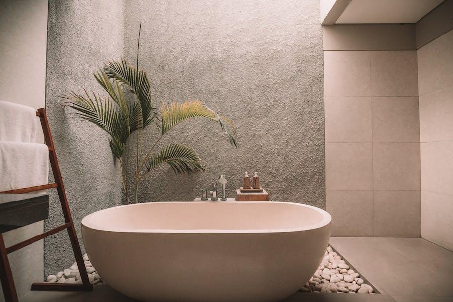 badeværelse badekar træ plante