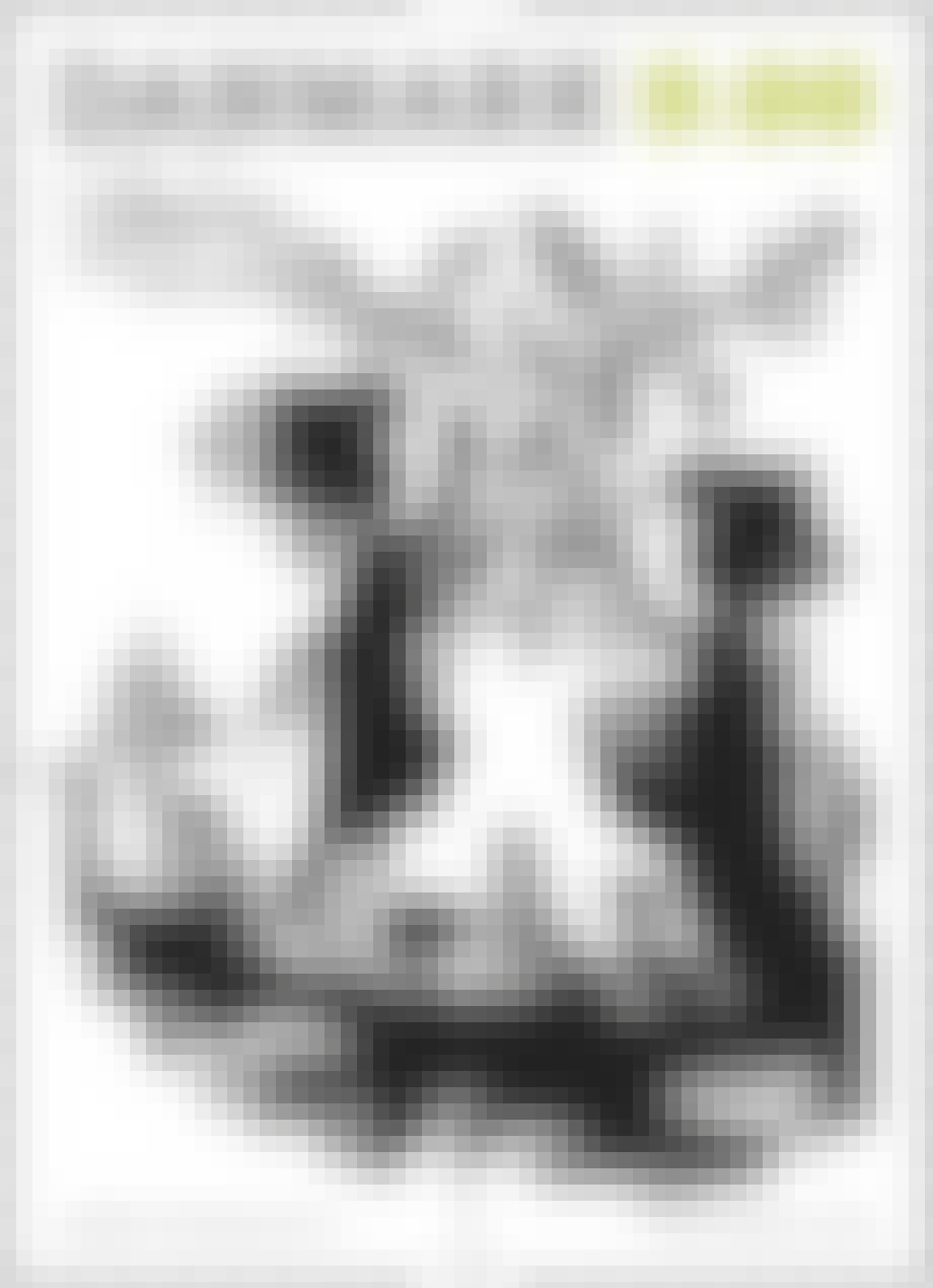 De sort-hvide motiver lå Bjørn Wiinblads hjerte nær.