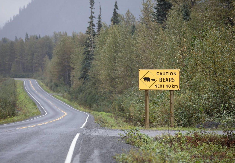 Skilt - beware bjørne bears.