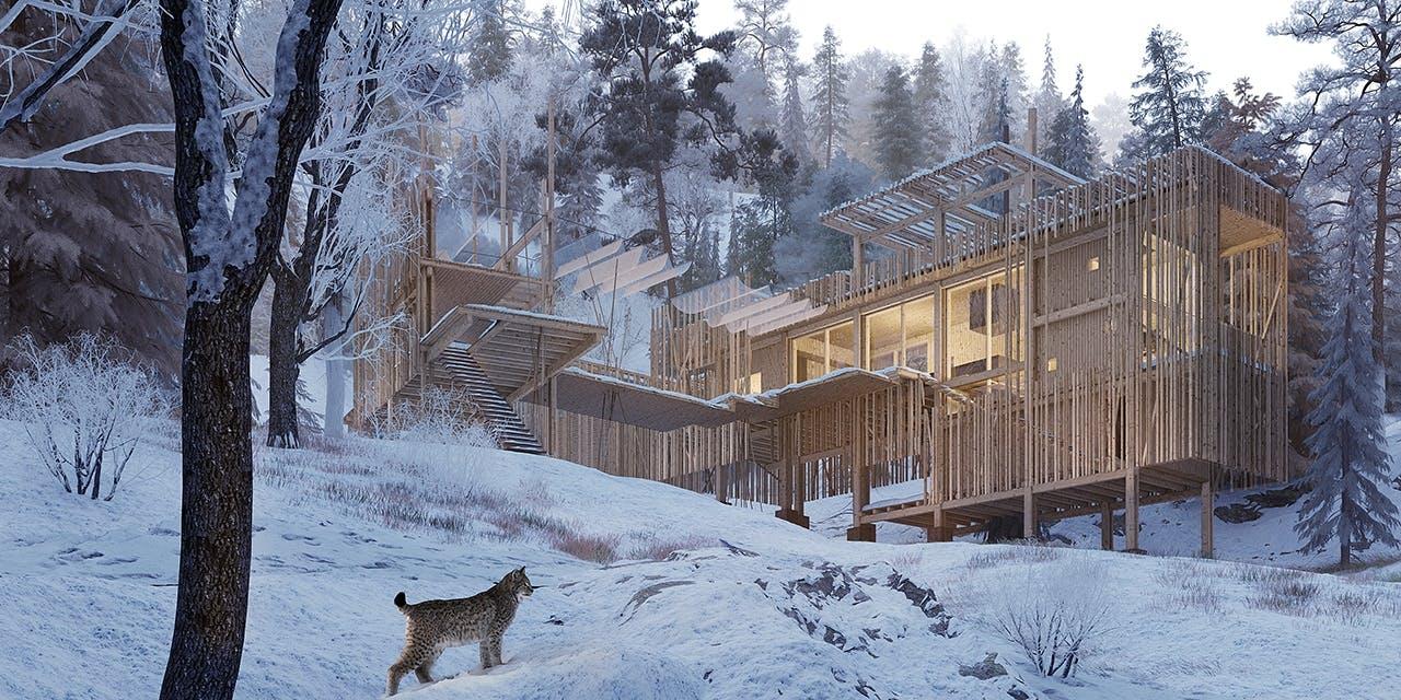 erik juul arkitektur canada vildmark puma vinter