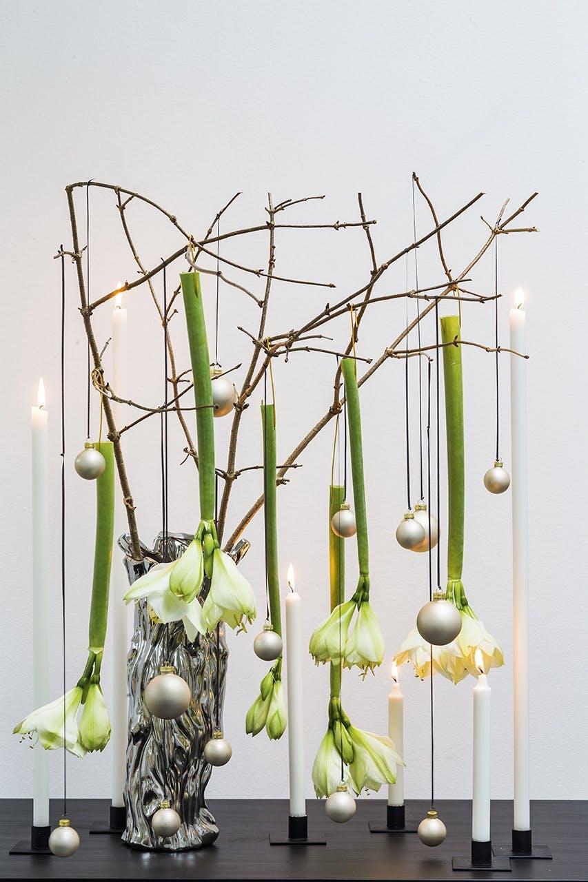 jul dekoration buket blomster annette von einem amaryllis resultat