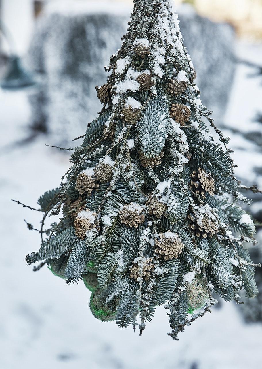 juletræ julekugler fugledekoration