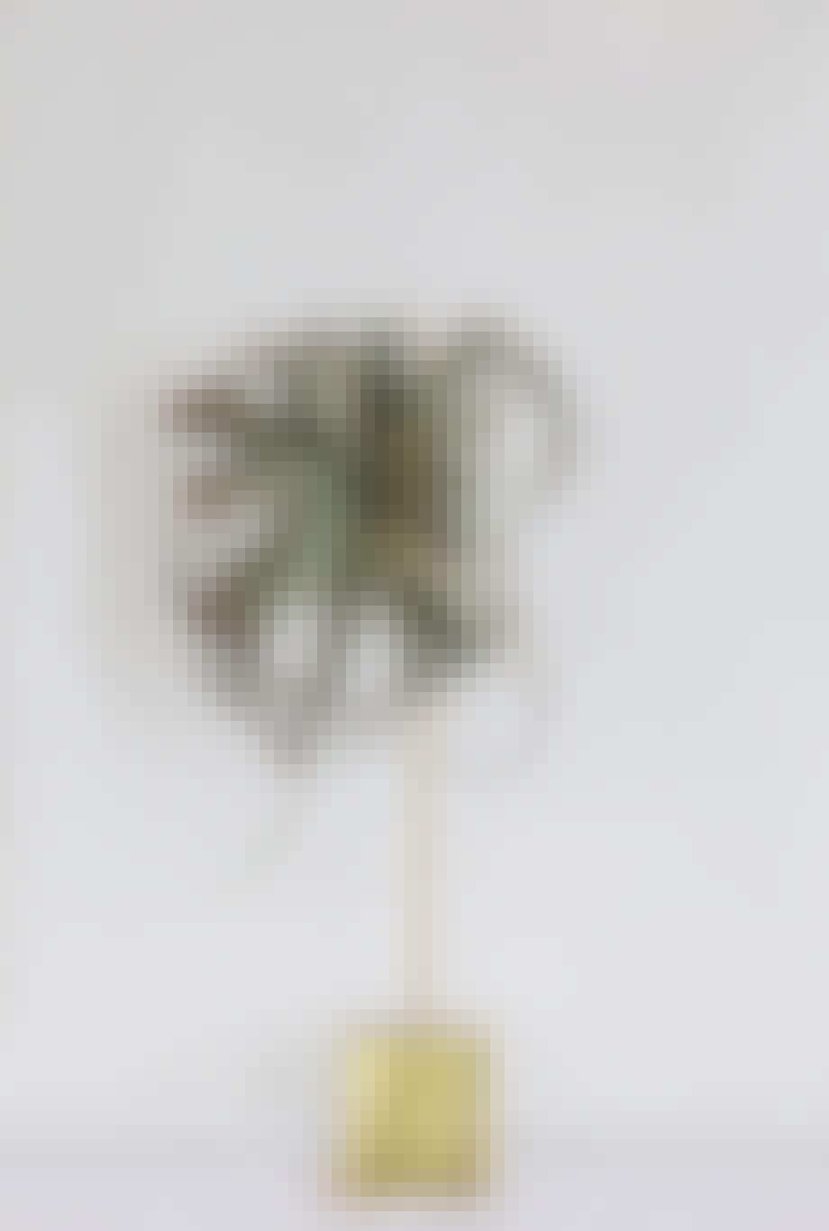 annette von einem juledekoration julepynt på stang luftplanter
