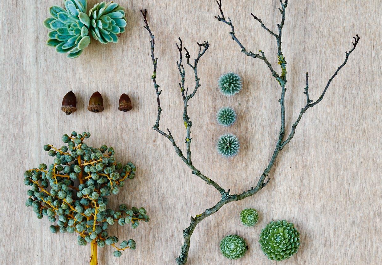 Plantemateriale til fremstilling af dørkrans