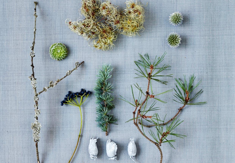 Plantemateriale til fremstilling af adventskrans