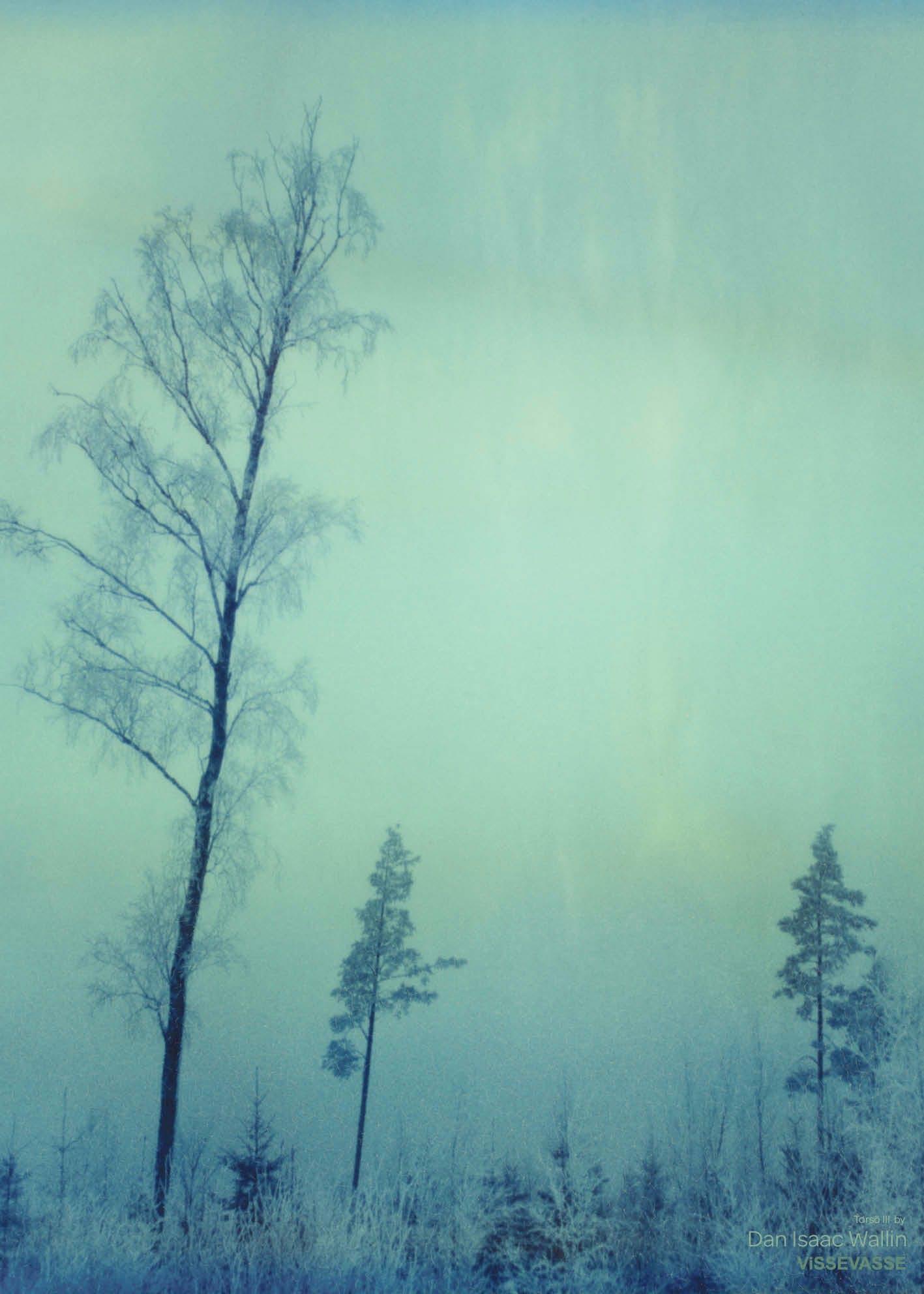ViSSEVASSE plakat i blå af træer med sne