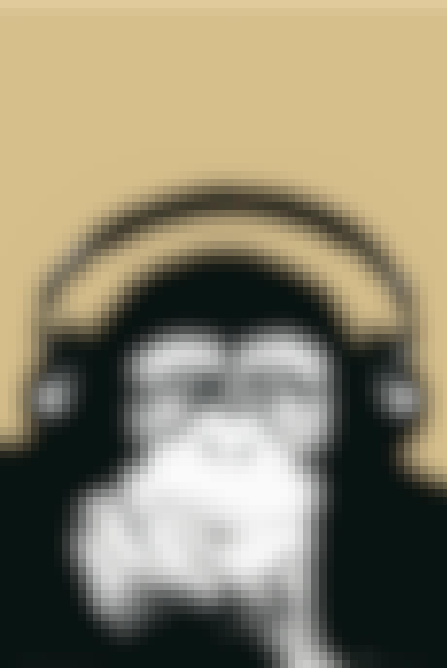 Posterland plakat københavn steez monkey abe med høretelefoner