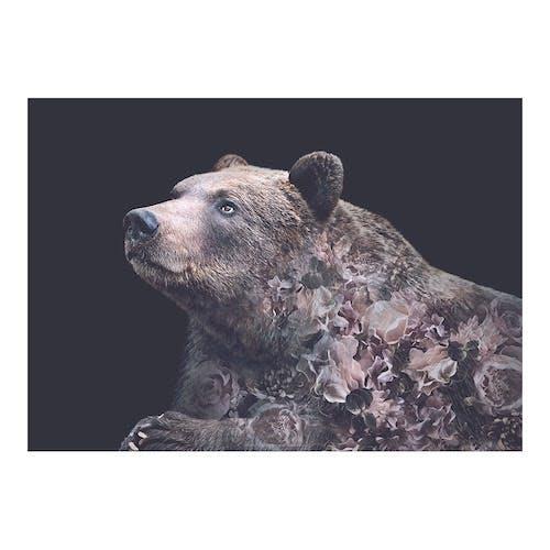 WhatWeDo plakat af bjørn med grafiske blomster på
