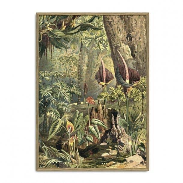 The Dybdahl Co. plakat af eventyrlig skovbund