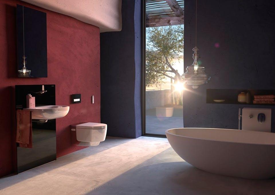 Geberit AquaClean Mera toilet