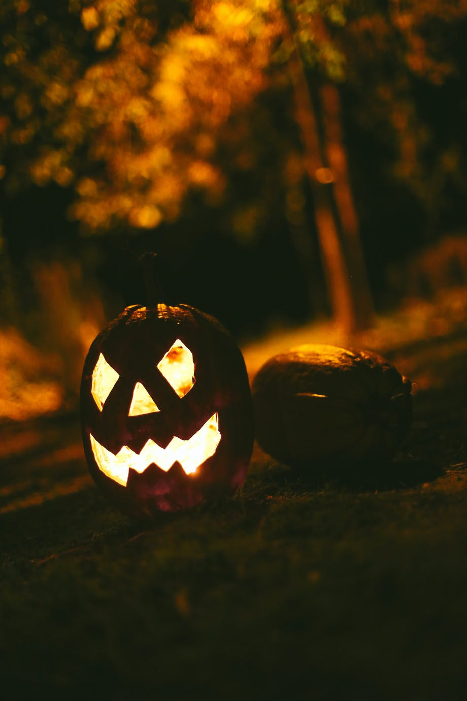 Græskar, halloween og efterår