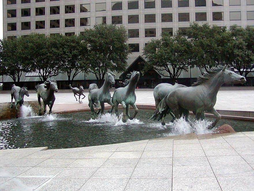 Mustanghestene udstråler vildskab og frihed, som ikke kan tæmmes