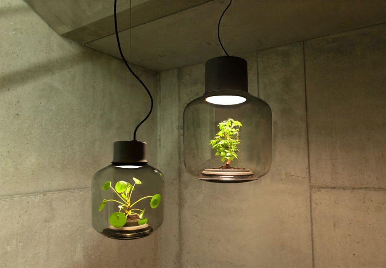 Mygdal lampen som giver liv til planter