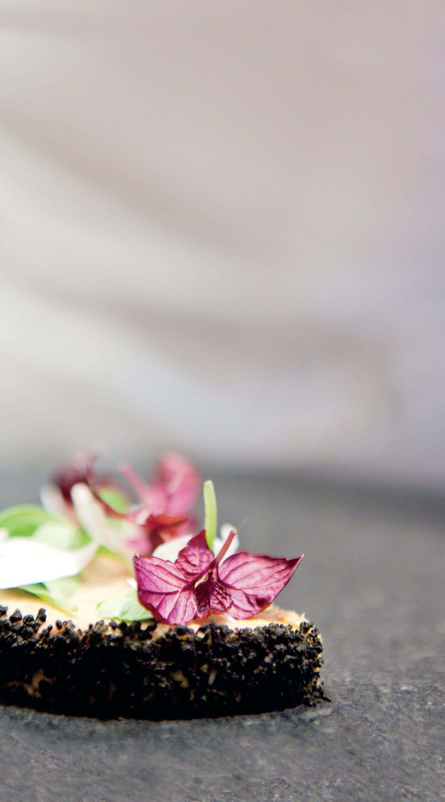 Jakob Mielckes foie gras-terrin