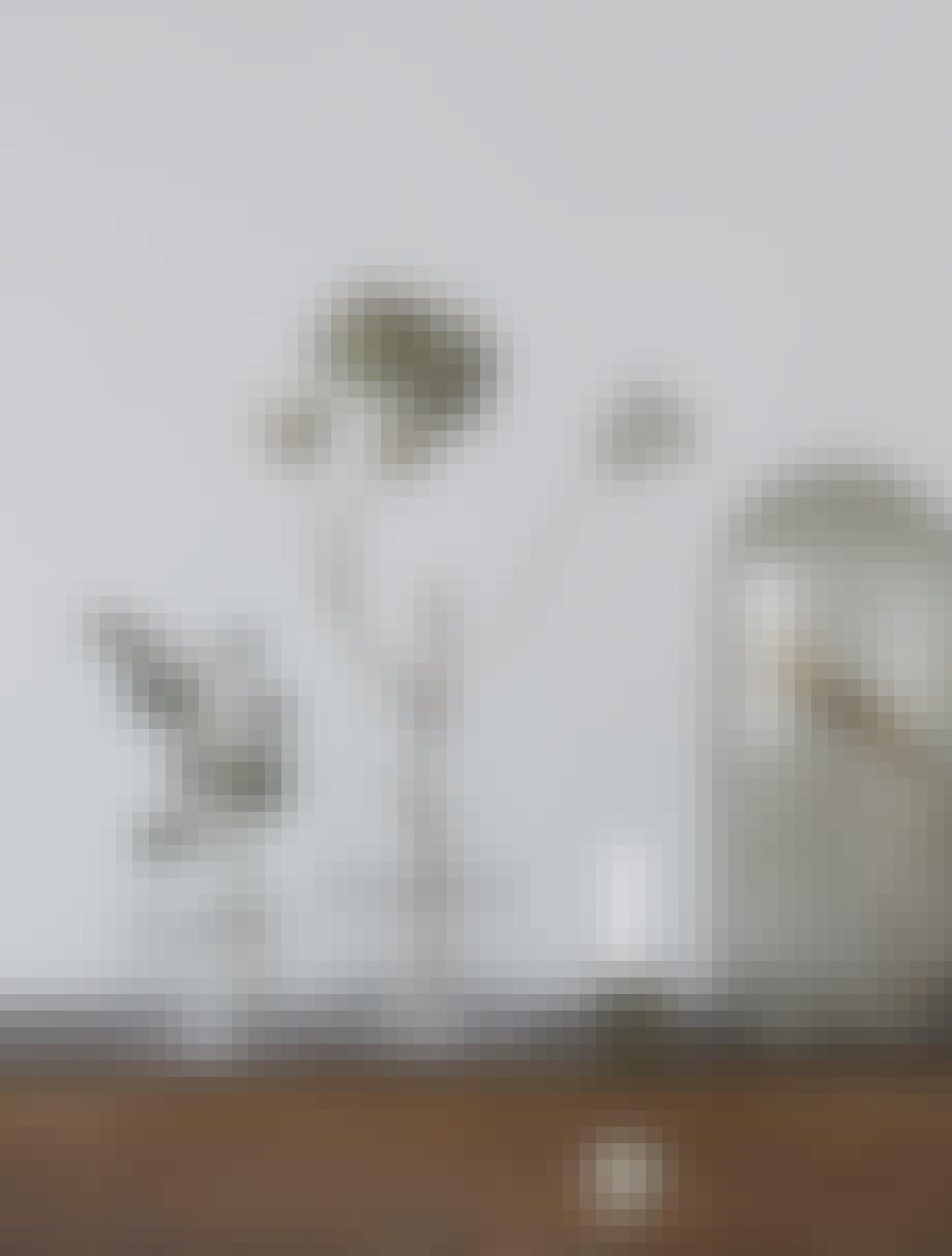 funkis hus frederiksberg indretning stilleben