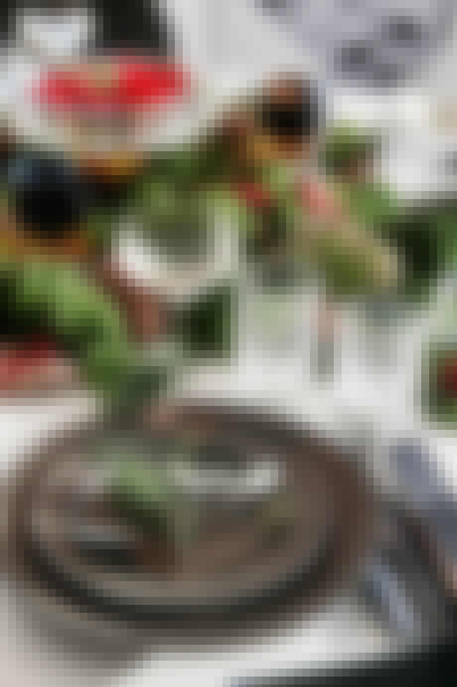 julebord med gran og kogler og tallerkener fra lyngby porcelæn