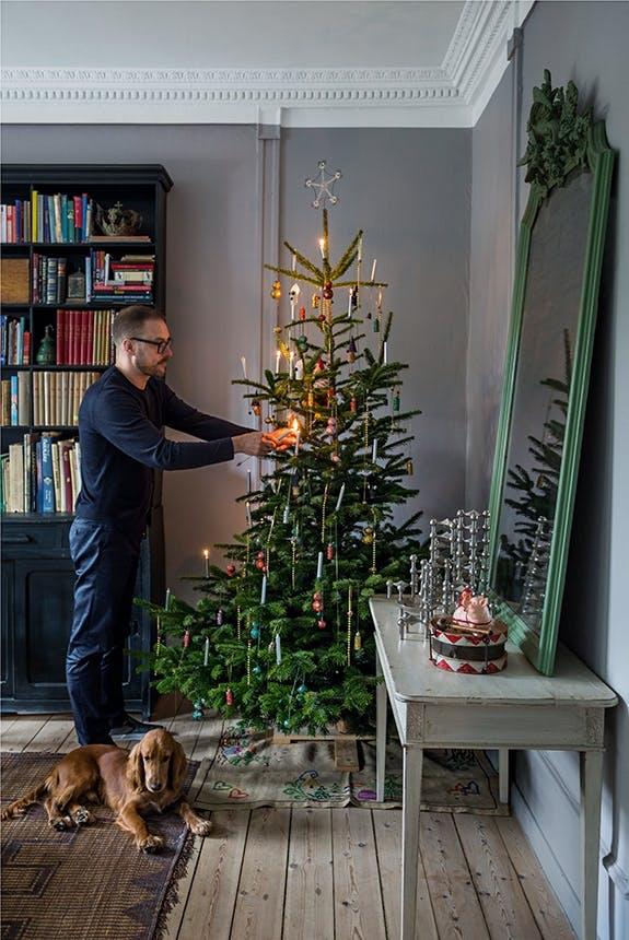 shane brox og hans hund anders pynter juletræet i stuen