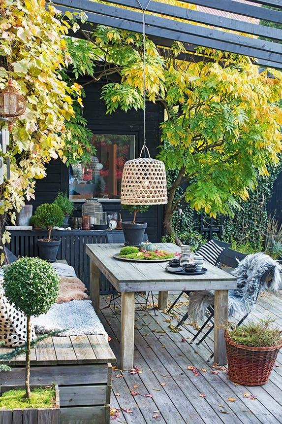 terrasse i have med siddeplads under træ