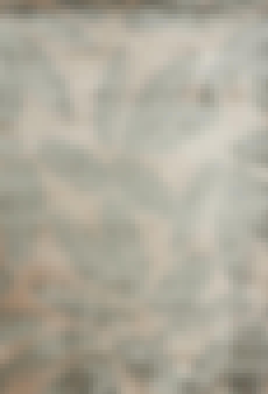 Organiske tæpper