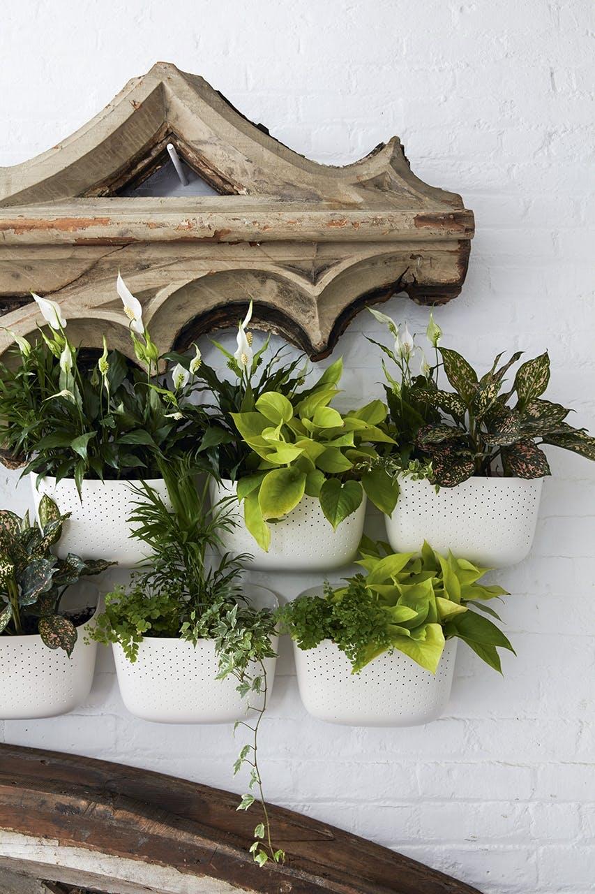 new yorker lejlighed indretning planter