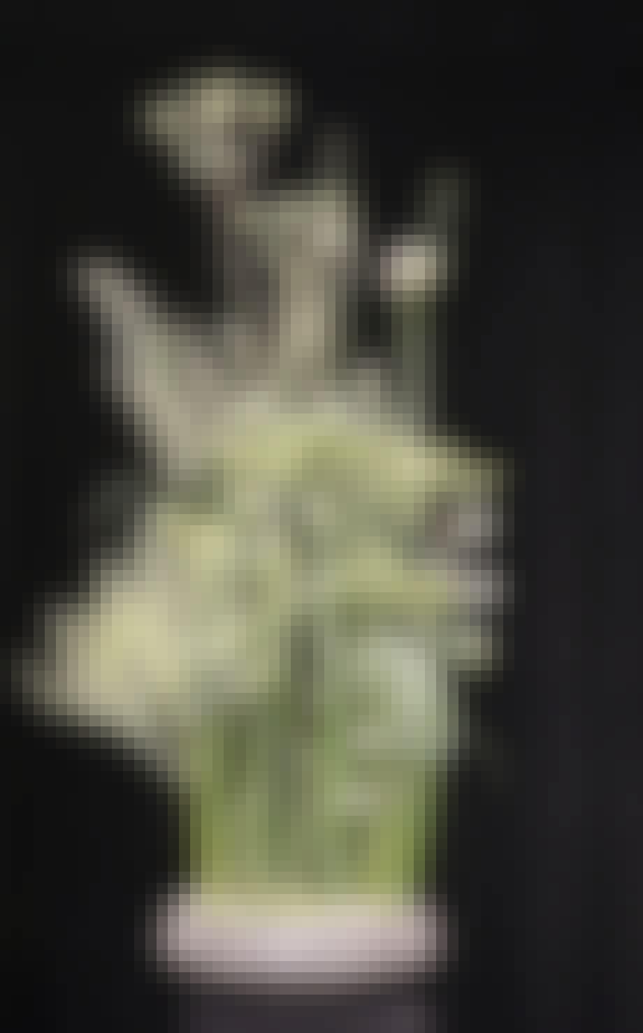 Annette von Einem blomsterbinding blomster blomster dekoration