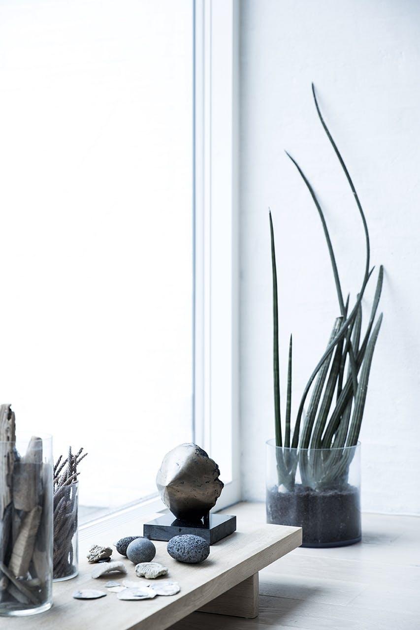 arkitekttegnede huse inspiration planter