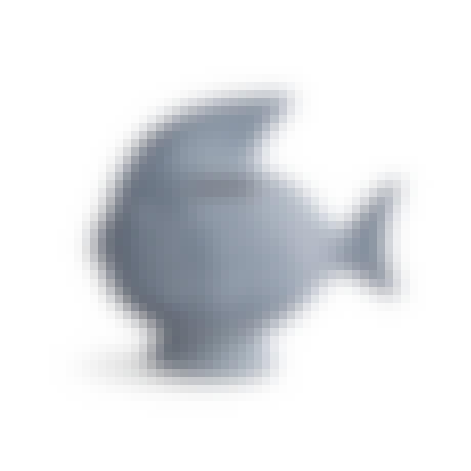 Fisk til mønter