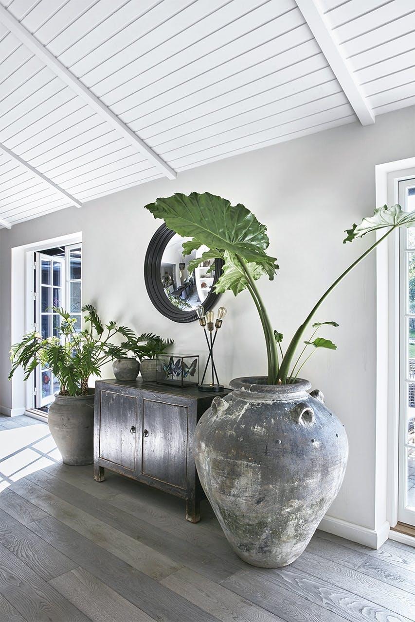 sommerhus privat palme