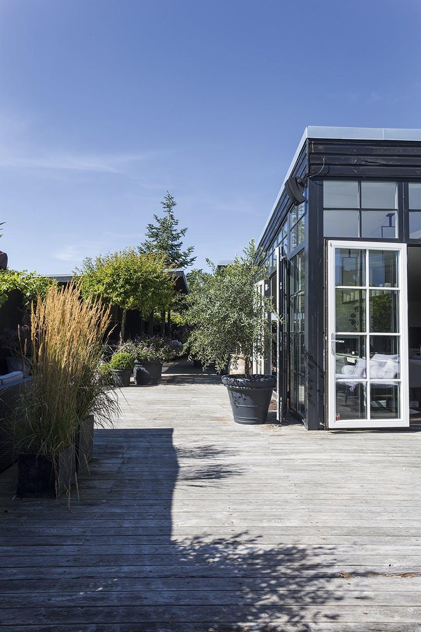 terrasse inspiration