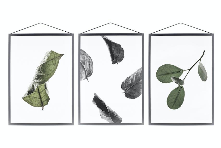 Kollektionen Floating Leaves