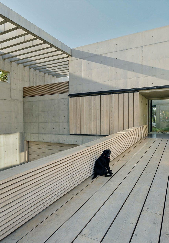Sort hund siddende på gangbro af lyst træ