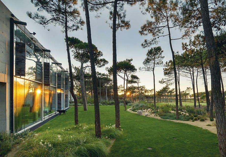 Stor have med græsplæne, træer, buske og sand
