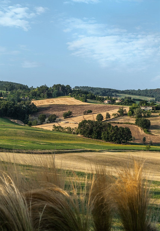 """Fantastisk beliggenhed i """"Lille Toscana"""""""