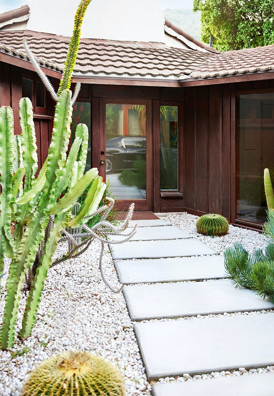 Ved stien op til indgangen er forskellige kaktusser plantet