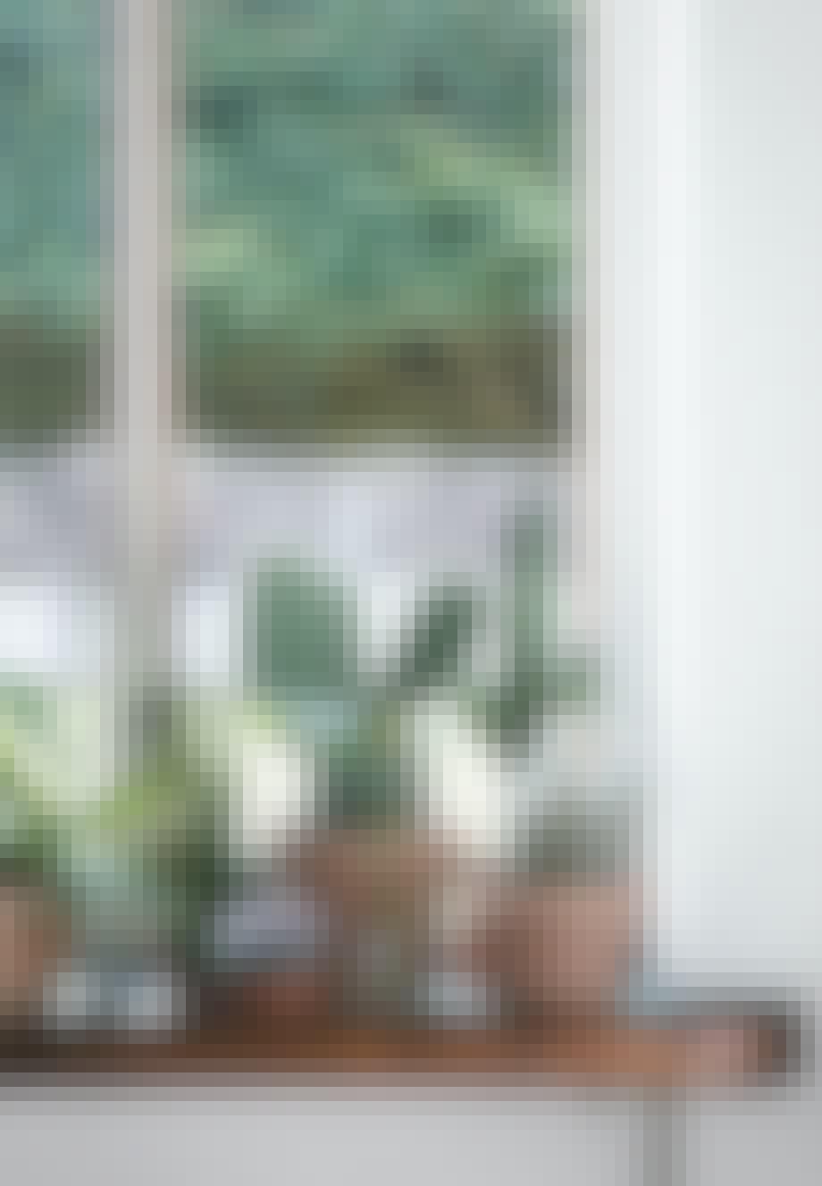 Skabt til potteplanter