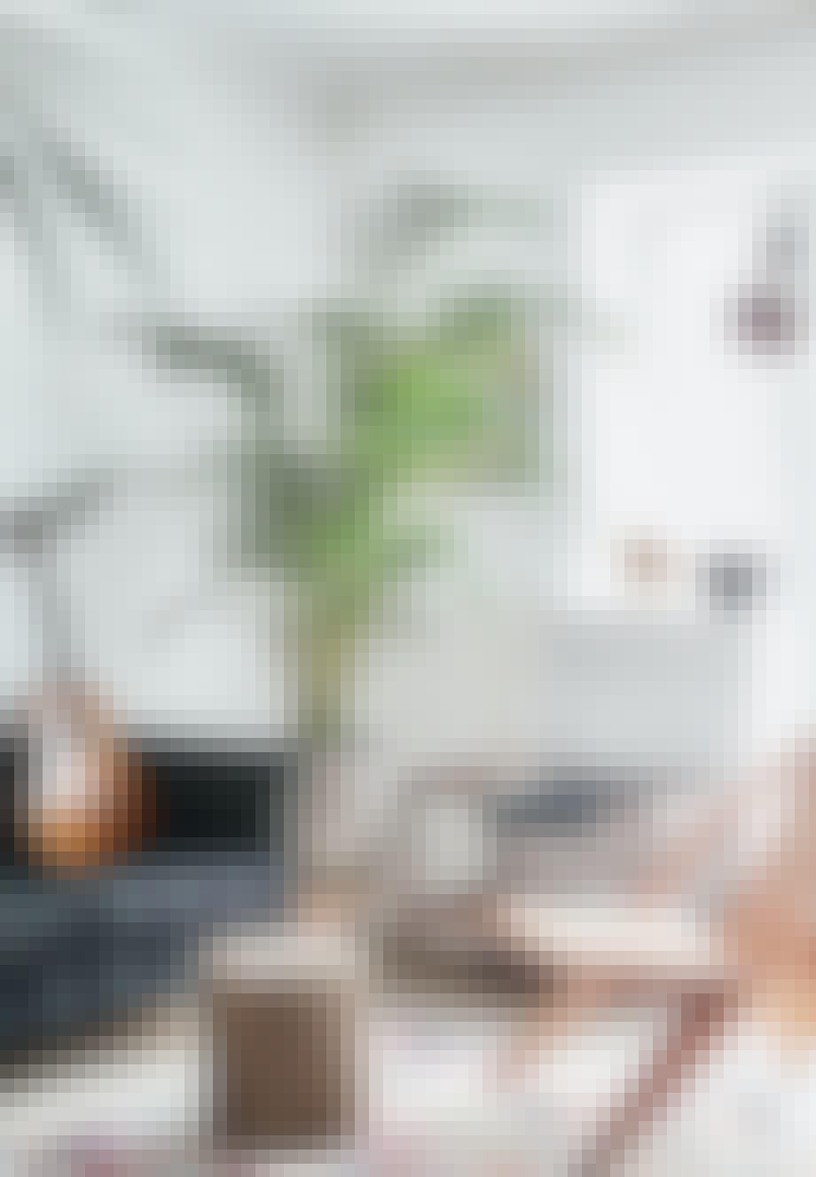 Stue med planter og mønstre