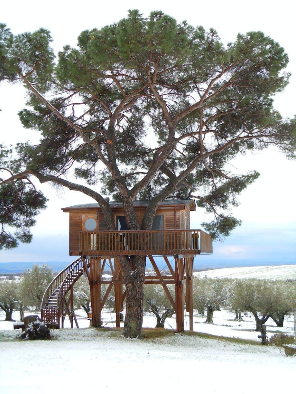 Luksus træhus