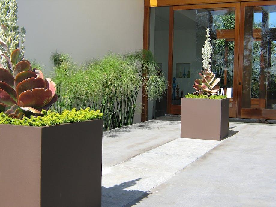 Minimalistisk arkitektur smelter sammen med haven