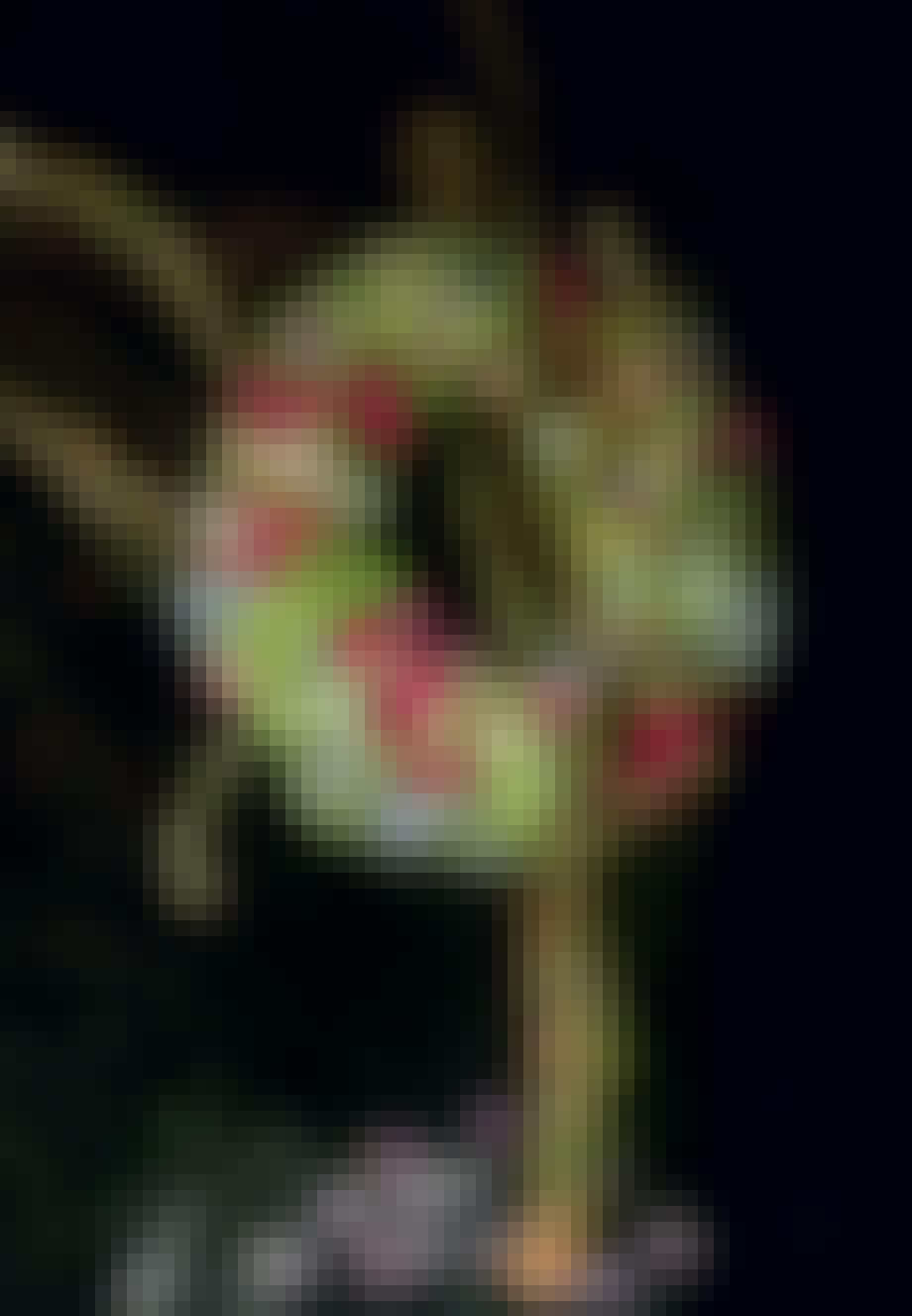 Kringlet hortensiakrans på døren