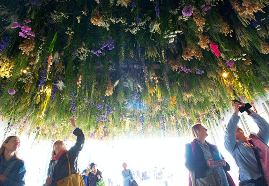 Rejsende i blomster