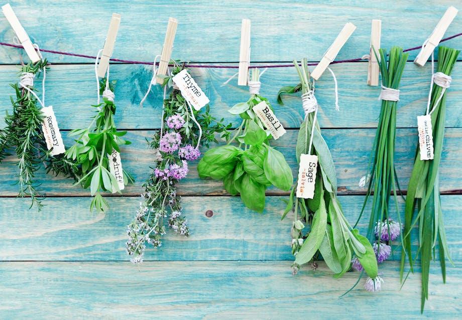 Du kan dyrke krydderurter frem til august