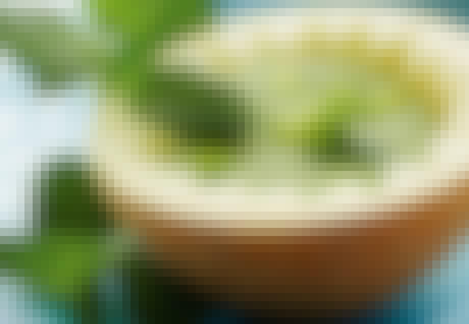 Kold melonsuppe med mynte