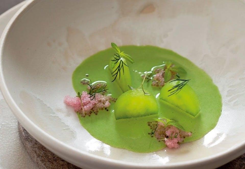Saltet koldskål med dild, agurk og stenbiderrogn
