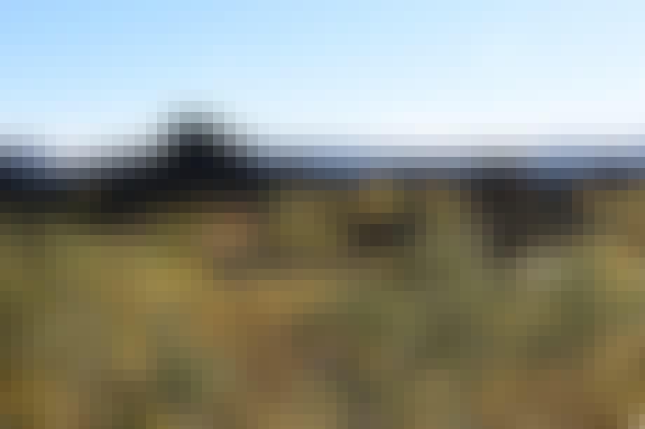 Dimmuborgir, Island — Castle Black