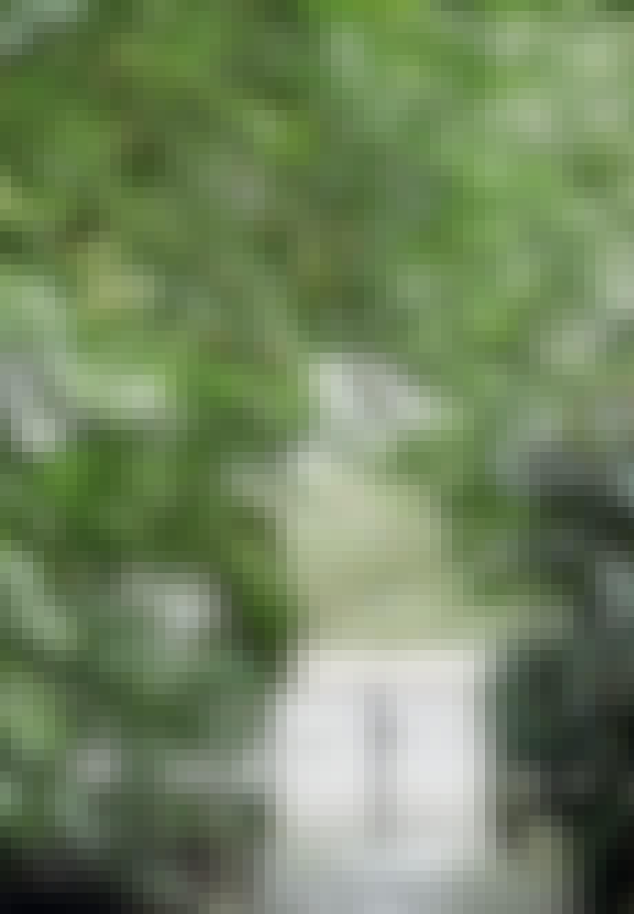 Grøn bue og åbning ind til huset