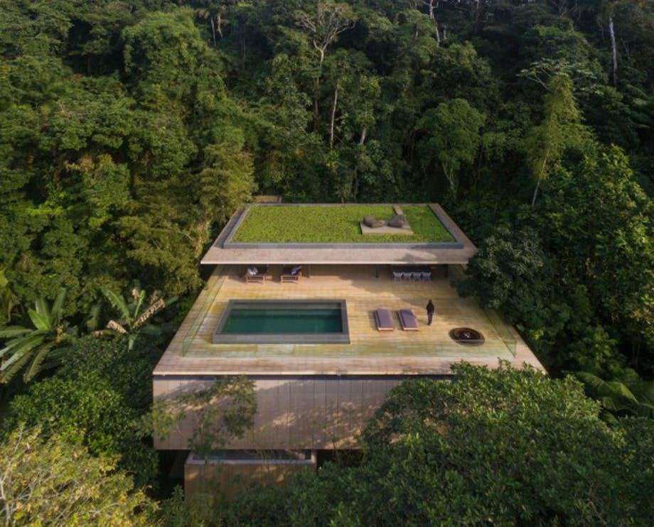 Infinty-pool i regnskoven top